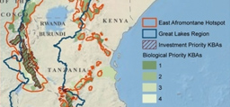 Image associated with Conservation Strategy Identifies Key Biodiversity Areas in Africa's Great Lakes