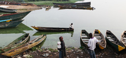 Image associated with Livelihoods at Risk as Freshwater Species in Africa's Largest Lake Face Extinction