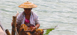 Image associated with Women Leading Conservation in the Mekong Region
