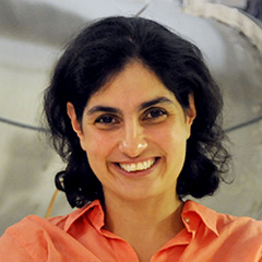 Profile portrait of Nergis Mavalvala