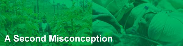 SecondMisconception