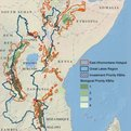Thumbnail for Conservation Strategy Identifies Key Biodiversity Areas in Africa's Great Lakes