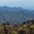 Thumbnail image for Assessing Biodiversity Vulnerability in the Tropical Andes