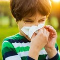 Thumbnail for Climate Change Could Exacerbate Allergies, Asthma