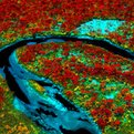 Thumbnail for Remote Sensing Technology Creates High Definition Maps of Sensitive Ecosystems