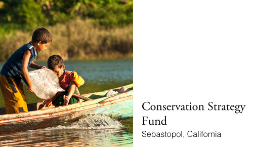 Conservation Strategy Fund