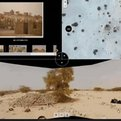Thumbnail for Tool Sheds Light on Destruction of World Heritage Sites in Mali