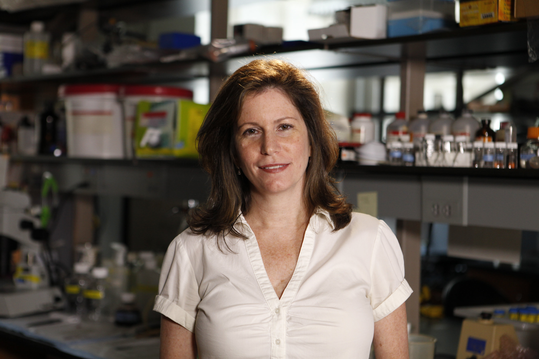 Sheila Nirenberg Sheila Nirenberg MacArthur Foundation