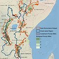 Conservation Strategy Identifies Key Biodiversity Areas in Africa's Great Lakes thumbnail