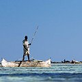 Report Suggests Options for Managing Protected Marine Areas in Madagascar thumbnail