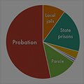 Community Supervision and Incarceration thumbnail