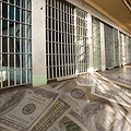 Following the Money of Mass Incarceration thumbnail