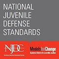 National Juvenile Defense Standards Published  thumbnail